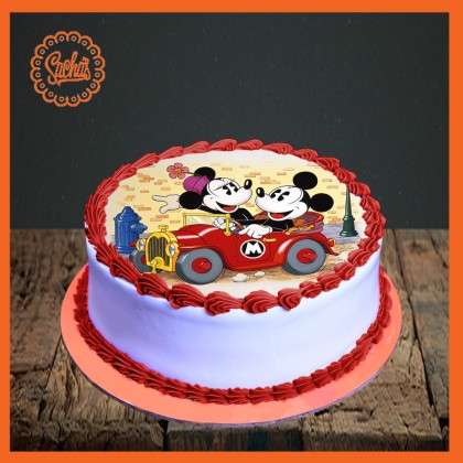 Mickey & Mini Mouse Picture Cake